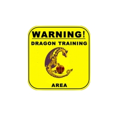 Dragon Junior Training Area