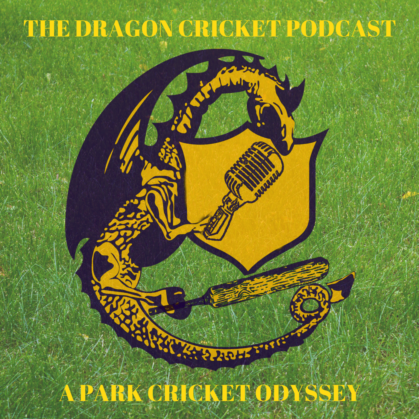 Dragon Cricket Pic Grass